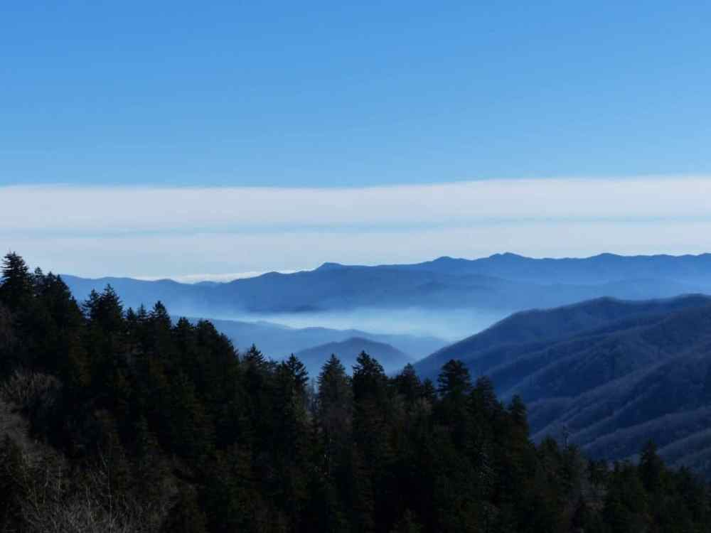 trees and mountain tops at Great Smoky National Park