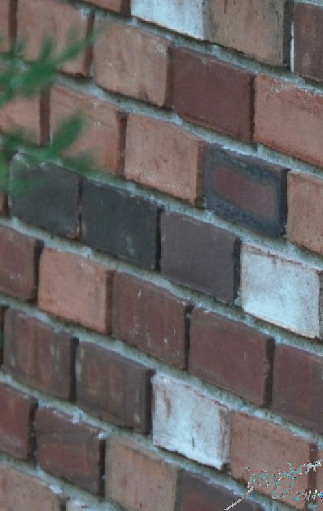 The Bricks that are the Basic Units Davidoff Art Copyright 2014