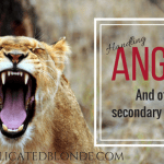 Handling Anger. And other secondary emotions