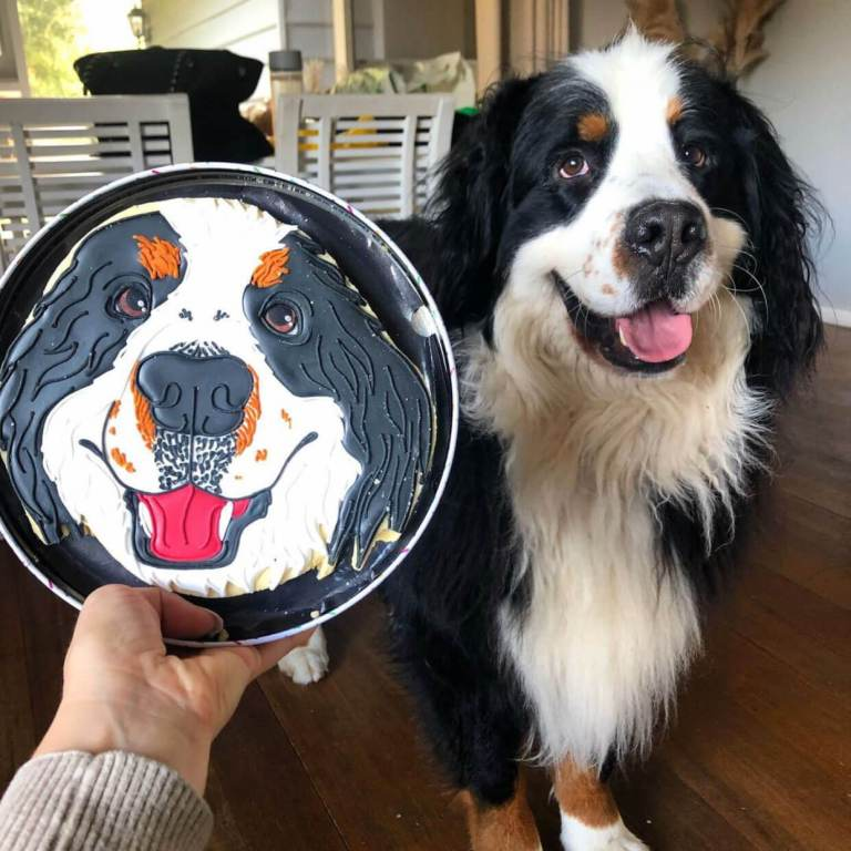 Pet Face Biscuit side-by-side