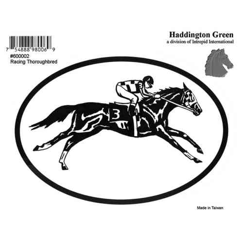 Decal - Racehorse