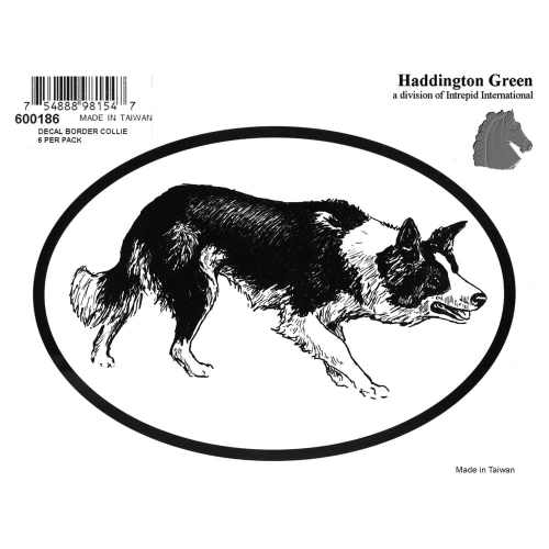 Dog Decal - Border Collie