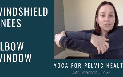 Windshield Knees & Elbow Window Pose – Yoga for Pelvic Health