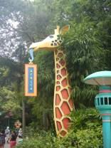 Giraffe Sign Animal Kingdom