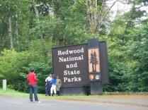 Entering Redwood National Forest