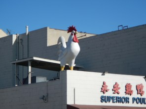 Large Cock in Chinatown