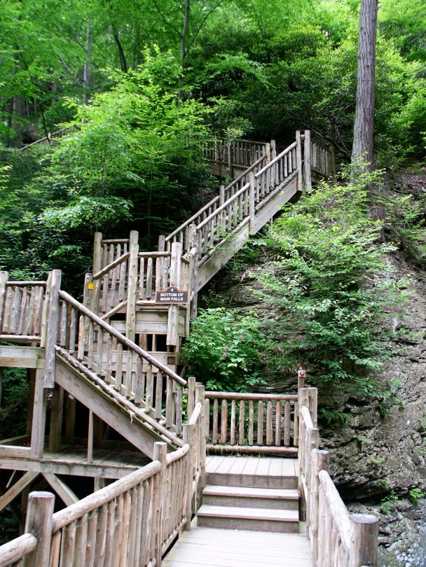 Some of the Bridges and Boardwalks at Bushkill Falls