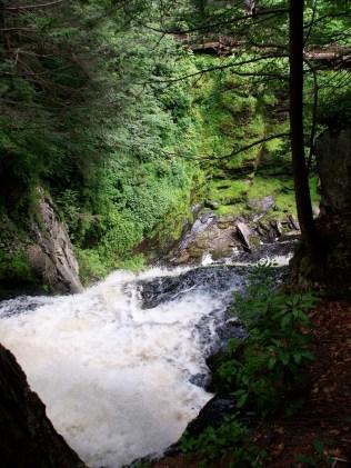 Rapids rushing along the river Bushkill Falls