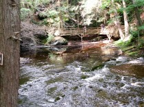 Bridge over the River in Bushkill Falls Pennsylvania