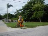 Manatee Mailbox Key West Fl