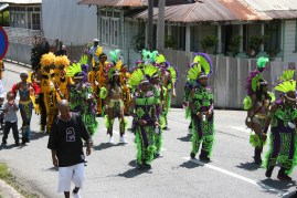 Jaggesar and Associates - Carnival in Trinidad