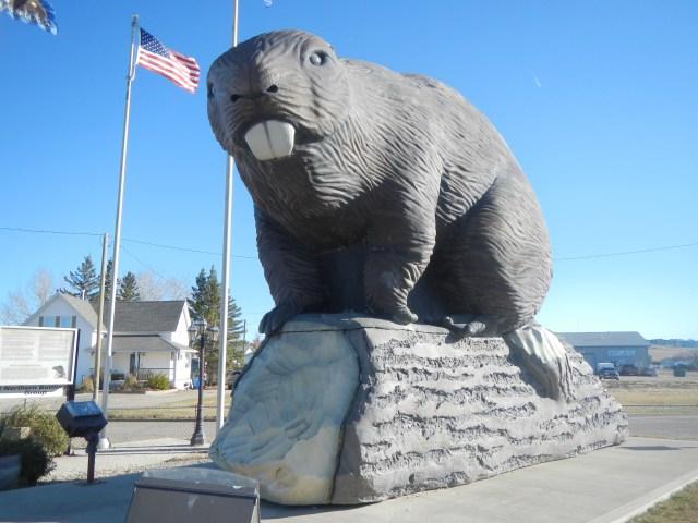 Beaver Statue Face
