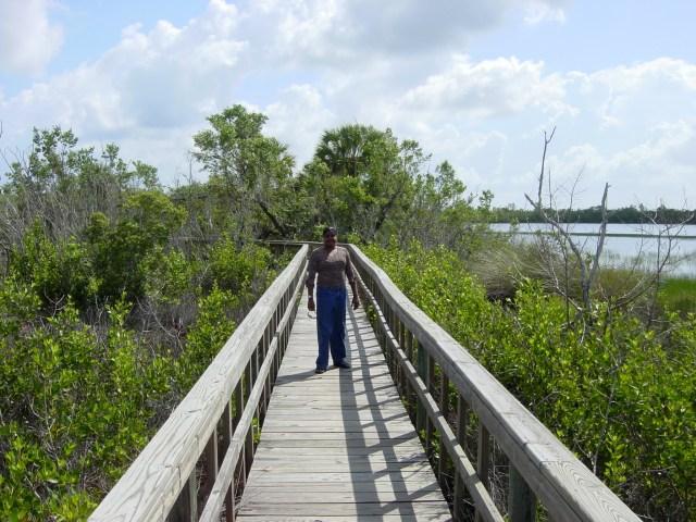 Lauren taking a stroll through the sawgrass