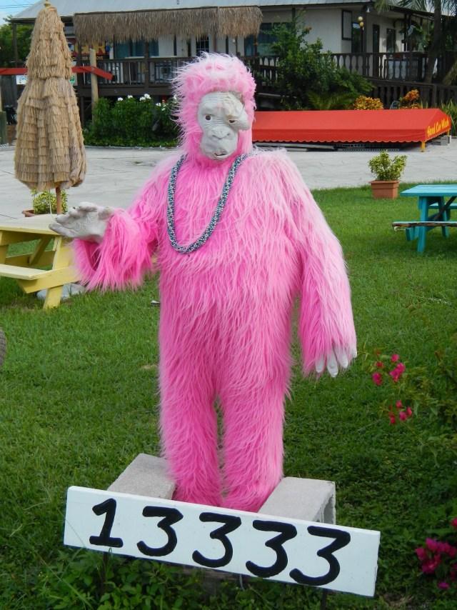 Road Trip Attractions Pink Gorilla