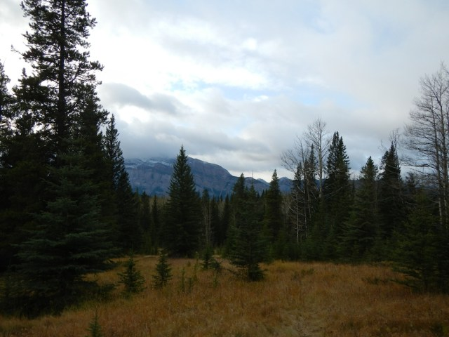 Open hiking tril in Banff