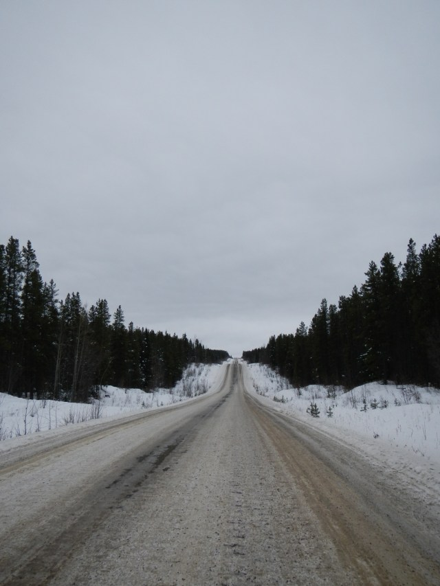 Cassiar Highway Road Surface