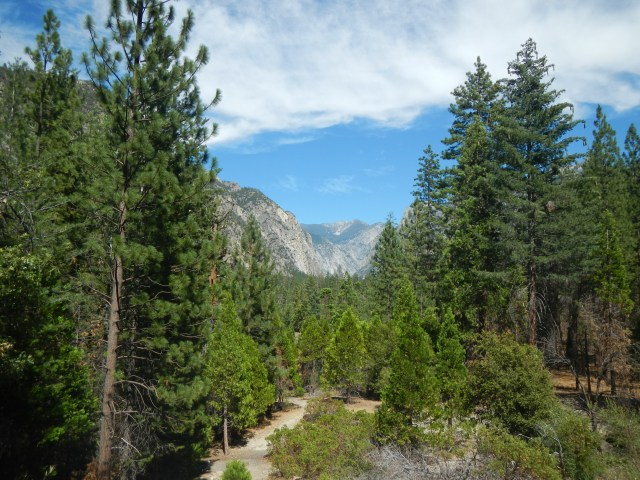 Kings Canyon National Park Photo Essay