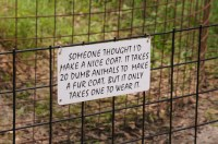 Big Cat Rescue Sign