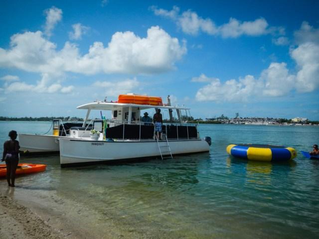 Tropical Sailing Miami Review