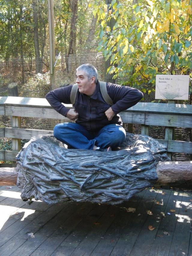 Maryland National Zoo 8