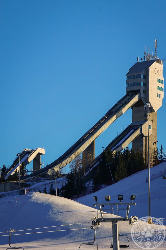 Ski Tower at the COP in Calgary