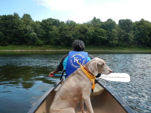 Canoeing like a Boss