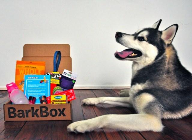 Gift Guide Bark Box
