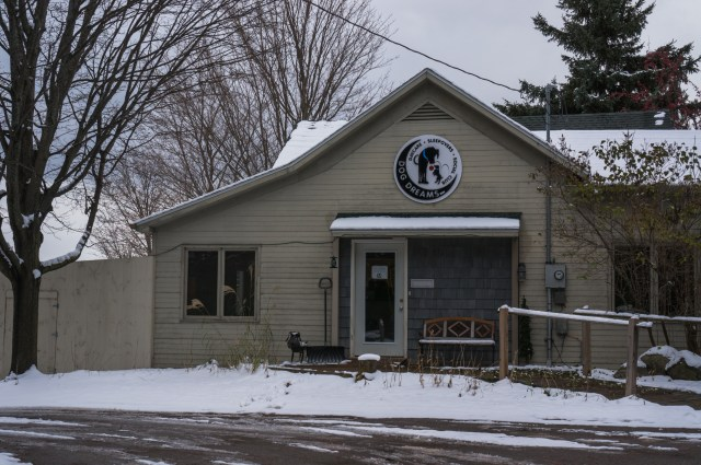 Dog Dreams Inn