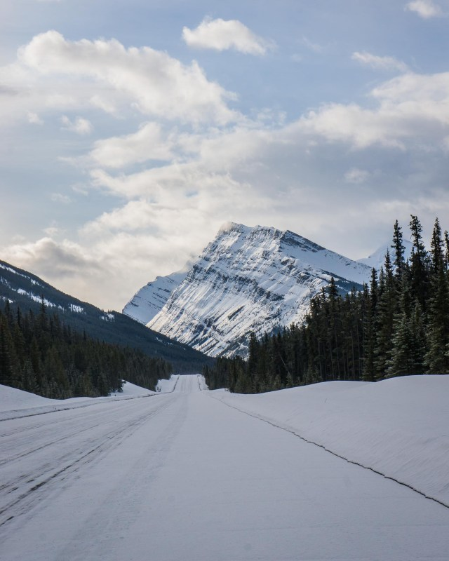 Bow Valley Parkway in Jasper