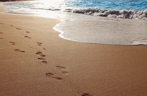 Your Voice is Your Footprint