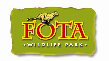 TOURISM: Fota Wildlife Park offering visitors chance to name baby Giraffe