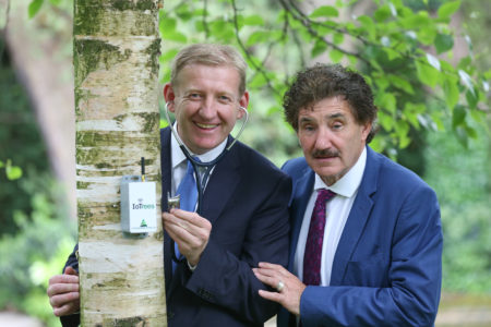 BUSINESS: Cork company Treemetrics signs €1.2m deal with ESA to create 'Internet of Trees'