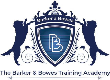 JOBS: How to train as a dog groomer: Irish academy @BowesBarker secures Ofqual accreditation