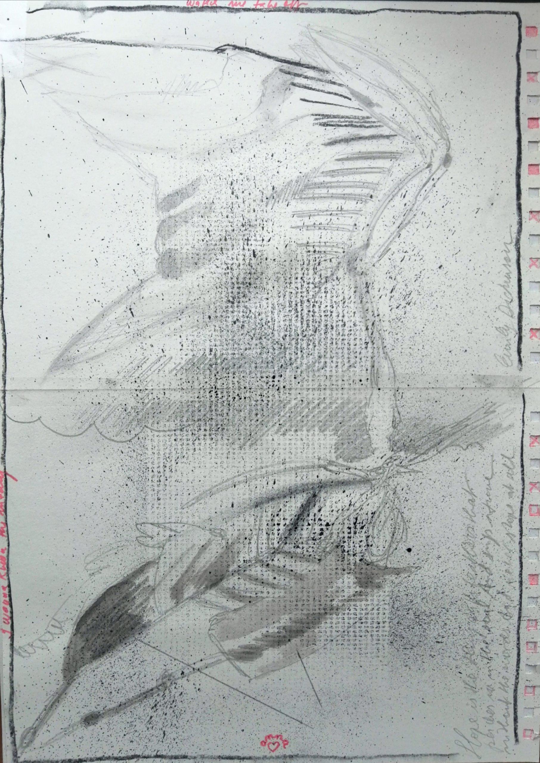 Birdstudy