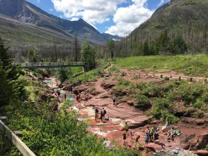 Waterton Lakes National Park continues to reopen after Kenow Fire