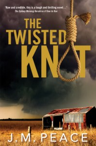 3793-twisted-knot_cover