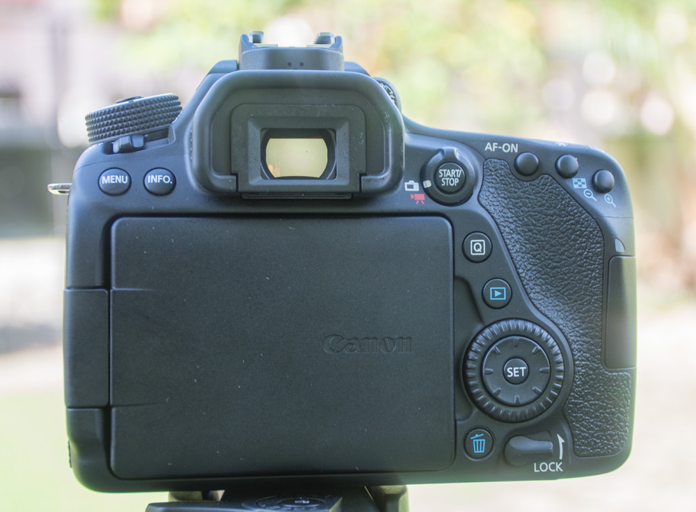 canon 80d revew picture