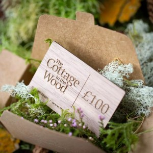 The Cottage in the Wood Forest Gift Box £100