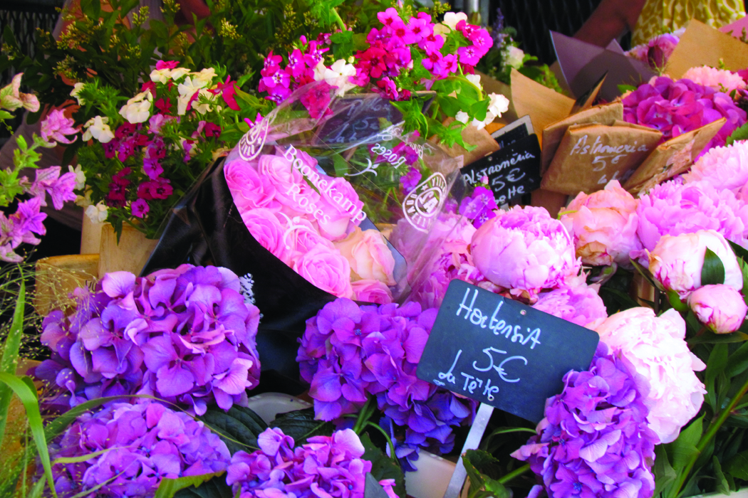Exploring French Open Air Flower Markets