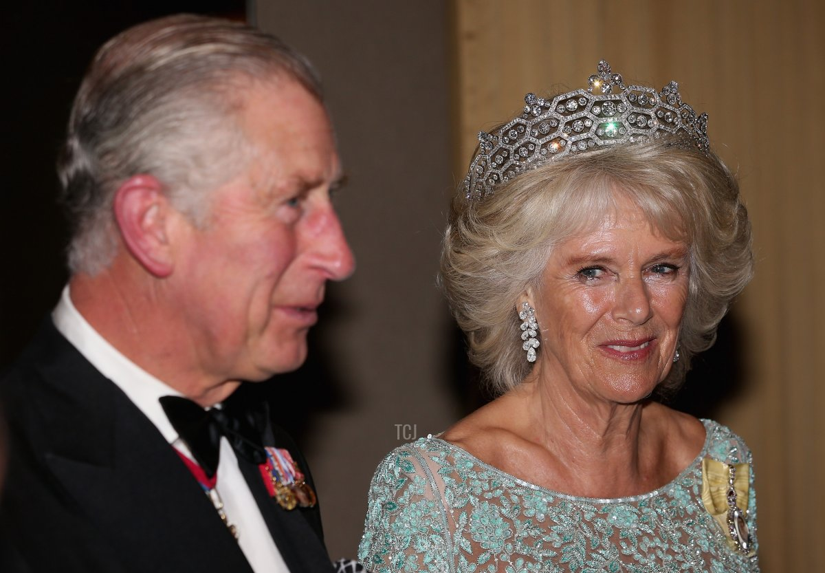 Camilla, Duchess of Cornwall and Prince Charles, Prince of Wales wait for guests in a line-up as they attend the CHOGM Dinner at the Cinnamon Lakeside Hotel during the Commonwealth Heads of Government 2013 Opening Ceremony at the Lotus Theatre on November 15, 2013 in Colombo, Sri Lanka