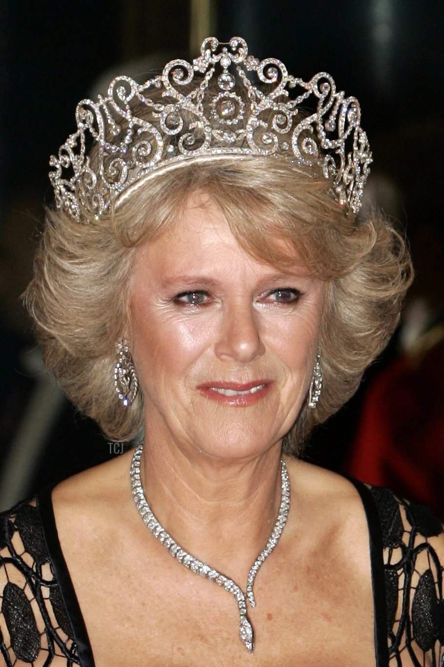 Camilla, Duchess of Cornwall, poses for photographers before attending a banquet at Buckingham's Palace in London 25 October 2005 in honour of Norway's Crown Prince Haakon and Crown Princess Mette-Marit who are on a three-day official visit to mark their Nordic nation's 100 years of independence