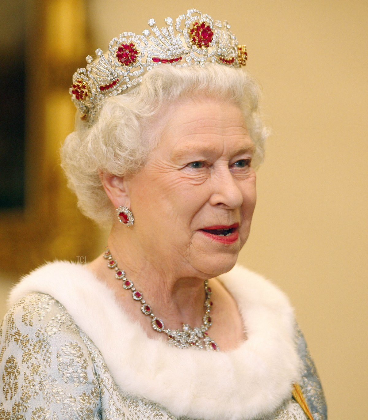 Britain's Queen Elizabeth is pictured before an official diner with the Slovenian President at Brdo Castle on October 21, 2008