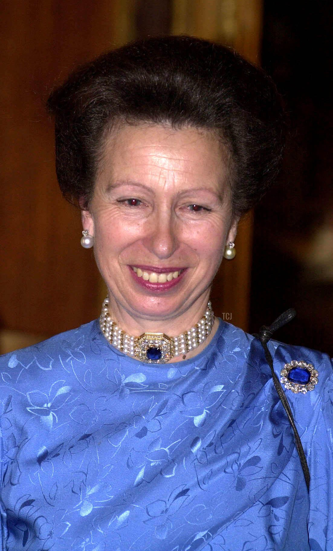 The Queen addresses a party at Windsor Castle, held in honour of The Princess Royal's 50th birthday and attended by guests from charities and organisations for which the Princess is patron, November 2000