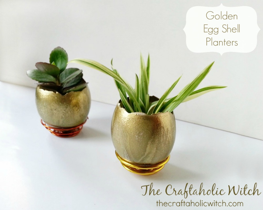 Create Golden Egg Shell Planters