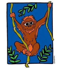 Orangutan T-Shirt Kit
