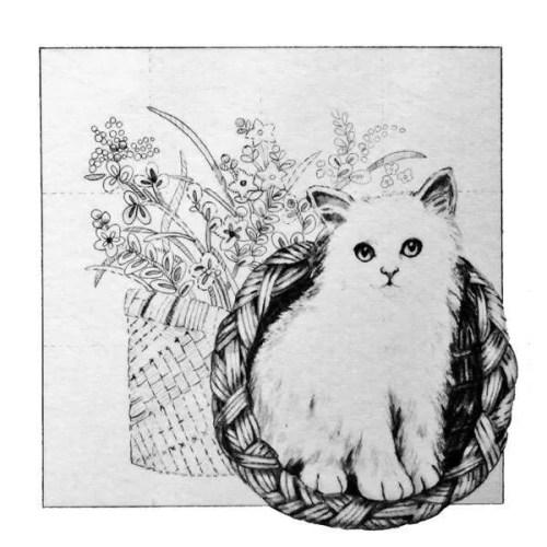 Cat Picture Trichem Vintage