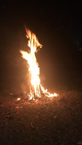 Campfire at Karjat Heritage Resort Weekend Gateway Mumbai green