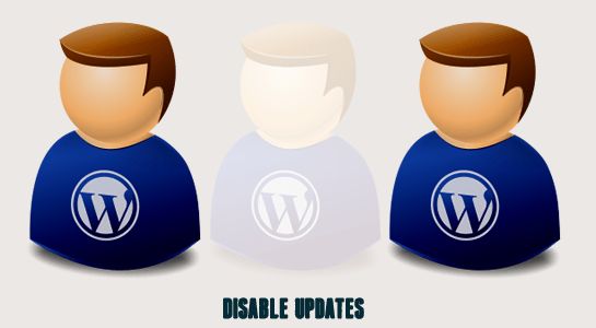 Disable updates for specific plugin in WordPress