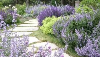 Creative Landscaping Ideas creative outdoor landscaping, decor and entertaining ideas
