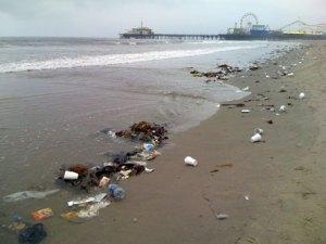 Credit: http://miataylor.com/santa-monica-beach/